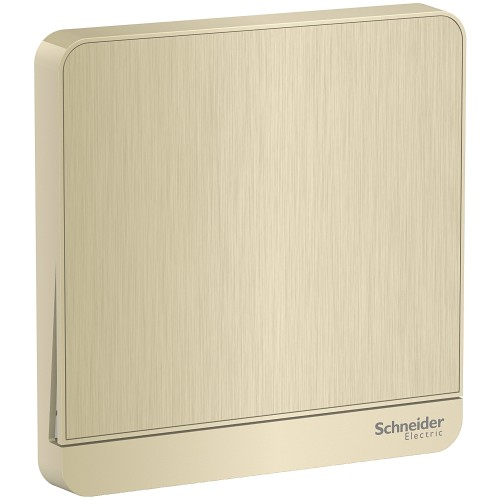 Schneider Electric AvatarOn Gold hairline Switch
