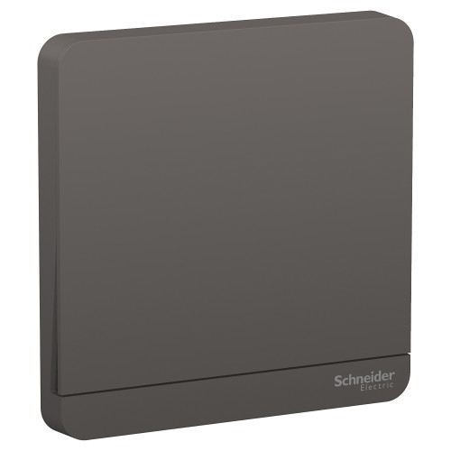 Schneider Electric AvatarOn Dark Grey Switch