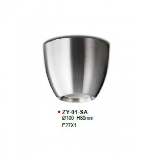 ZY-01